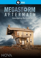 Megastorm Aftermath (Megastorm Aftermath)