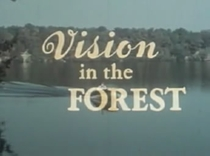 Vision In the Forest - Poster / Capa / Cartaz - Oficial 1
