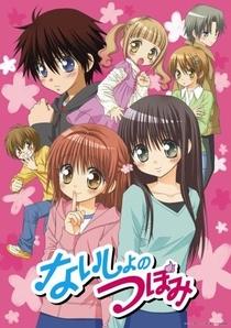 Naisho no Tsubomi OVA - Poster / Capa / Cartaz - Oficial 1