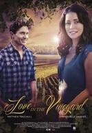 Amor em Vineyard