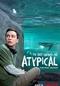 Atypical (4ª Temporada) (Atypical (Season 4))