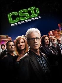 CSI: Crime Scene Investigation (13ª Temporada) - Poster / Capa / Cartaz - Oficial 1