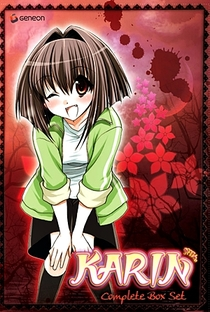 Karin - Poster / Capa / Cartaz - Oficial 18
