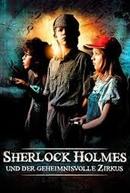 Em Nome de Sherlock Holmes  (Sherlock Holmes nevében)