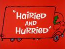 Hairied and Hurried (Hairied and Hurried)