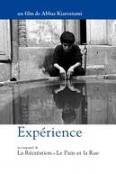 Experiência (Tadjrebeh)