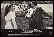 Ovelha Negra, Uma Despedida de Solteiro - Poster / Capa / Cartaz - Oficial 2