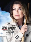Grey's Anatomy (12ª Temporada) (Grey's Anatomy (Season 12))
