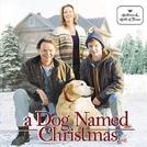 Um Cachorro Chamado Natal (A Dog Named Christmas)