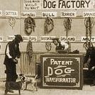 Dog Factory (Dog Factory)