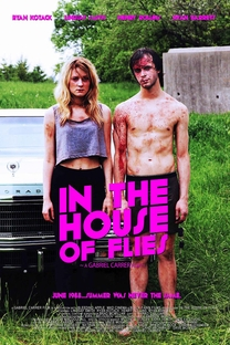 In the House of Flies - Poster / Capa / Cartaz - Oficial 1