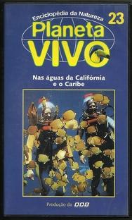 Planeta Vivo - Nas Águas da Califórnia e do Caribe - Poster / Capa / Cartaz - Oficial 1