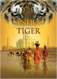 India: O Reino do Tigre - Poster / Capa / Cartaz - Oficial 1