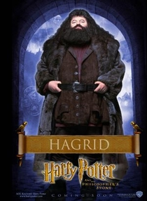 Harry Potter e a Pedra Filosofal - Poster / Capa / Cartaz - Oficial 12