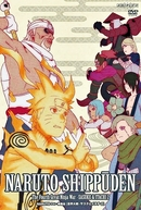 Naruto Shippuden (15ª Temporada) (ナルト- 疾風伝 シーズン15)