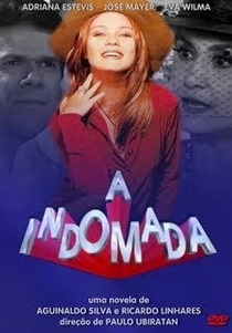 A Indomada - Poster / Capa / Cartaz - Oficial 1