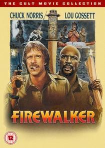 Os Aventureiros do Fogo - Poster / Capa / Cartaz - Oficial 5