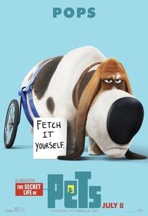 Pets: A Vida Secreta dos Bichos - Poster / Capa / Cartaz - Oficial 9
