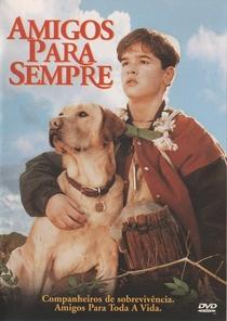 Amigos Para Sempre - Poster / Capa / Cartaz - Oficial 4