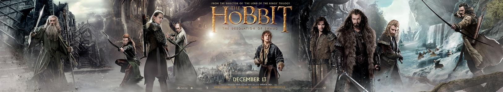 """""""O Hobbit: A Desolação de Smaug"""" ganha banner gigante"""