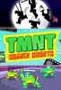 TMNT - Summer Shorts