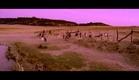 Cólera - Short Film By Aritz Moreno