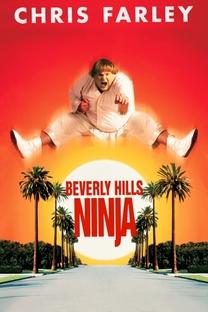 Um Ninja da Pesada - Poster / Capa / Cartaz - Oficial 1