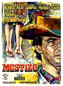 Django Volta Para Matar - Poster / Capa / Cartaz - Oficial 1