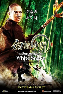 O Feiticeiro e a Serpente Branca - Poster / Capa / Cartaz - Oficial 6