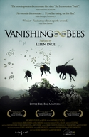 Desaparecimento das Abelhas (Vanishing of the Bees)