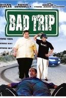 Viagem Errada (Tyrone / Bad Trip)