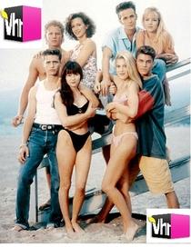 Biografia VH1: Beverly Hills 90210 - Poster / Capa / Cartaz - Oficial 1