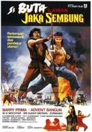 The Warrior and the Blind Swordsman (Si Buta Iawa Jaka Sembung)