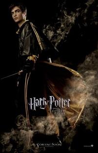 Harry Potter e o Cálice de Fogo - Poster / Capa / Cartaz - Oficial 12