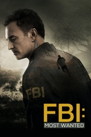 FBI: Most Wanted (1ª Temporada)