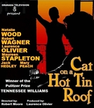 Cat on a Hot Tin Roof (Cat on a Hot Tin Roof)