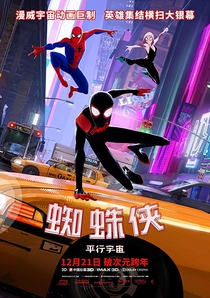 Homem-Aranha no Aranhaverso - Poster / Capa / Cartaz - Oficial 14