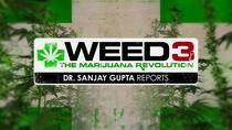 Weed 3: The Marijuana Revolution - Poster / Capa / Cartaz - Oficial 1