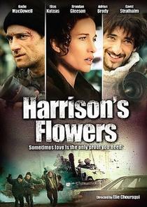 O Resgate de Harrison - Poster / Capa / Cartaz - Oficial 5