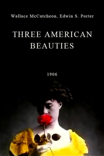 Three American Beauties - Poster / Capa / Cartaz - Oficial 1