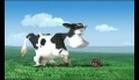 Shortz - Agricultural Report