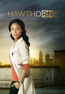 Hawthorne (1ª Temporada) - Poster / Capa / Cartaz - Oficial 1