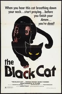 Gato Negro - Poster / Capa / Cartaz - Oficial 2