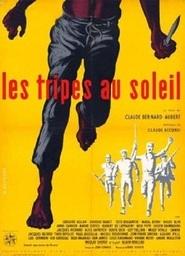 Les tripes au soleil - Poster / Capa / Cartaz - Oficial 1