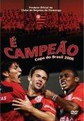 É Campeão - Copa do Brasil 2006