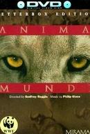 Anima Mundi (Anima Mundi)