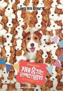 How to Steal a Dog - Poster / Capa / Cartaz - Oficial 2
