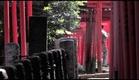 TOKYO WAKA trailer  [www.StyloFilms.com]