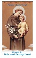 Antônio de Pádua, o santo dos milagres (Antonio di Padova, Il santo dei miracoli)
