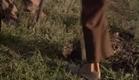 El último verano de la boyita - Trailer